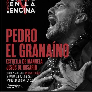 Pedro El Granaíno