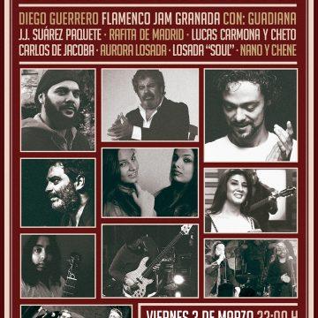 Gala Flamenca. Diego Guerrero Flamenco Jam