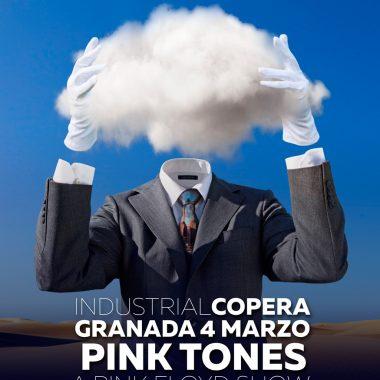Pink Tones